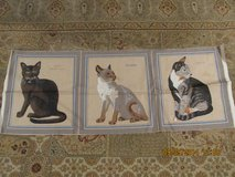 """Quilting """"Cat"""" Squares in Kingwood, Texas"""