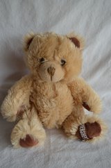 "Hershey Teddy bear Plush Brow 7""-9"" in Naperville, Illinois"