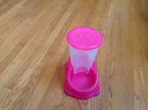 Pink pet food dispenser in Chicago, Illinois