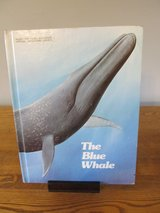 The Blue Whale in Aurora, Illinois