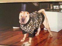XL Leopard Faux Fur Dog Coat in Lockport, Illinois