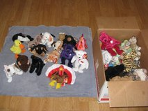Retired Beanie Babies (Lot of 44) in Camp Pendleton, California