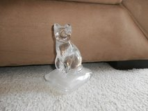 crystal Cat.... in Naperville, Illinois