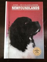 Newfoundlands in Naperville, Illinois