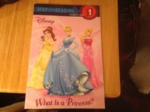 What Is A Princess? in Naperville, Illinois