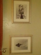 Framed baby prints in Alamogordo, New Mexico