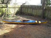 "REDUCED! EXCELLENT condition 15'5"" Eddyline Journey Kayak, paddle, and car top cushions! in Warner Robins, Georgia"