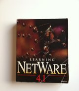 Learning NetWare 4.1 in Naperville, Illinois