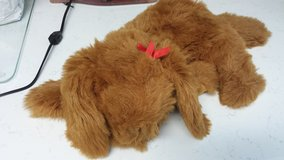 Stuffed Dog with Bow in Kingwood, Texas
