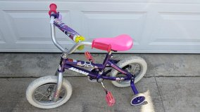 Purple Magna Bike in Fort Campbell, Kentucky