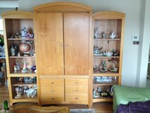 TV Cabinet in Naperville, Illinois