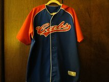 Baseball Jersey MLB New Large (42-44) reduced in Tinley Park, Illinois