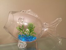 Glass Fish Shaped Fish Bowl in Naperville, Illinois