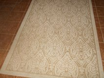 Beige & White Area Rug in Spring, Texas