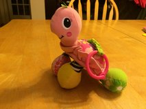 Baby Hanging Toy-Turtle in Naperville, Illinois