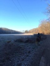New Years Day Trail Ride in Fort Campbell, Kentucky