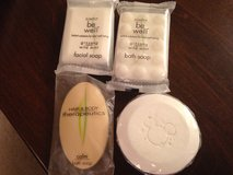 Misc Small Soaps #2 in Naperville, Illinois