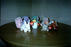 Beanie Baby bunnies in Tinley Park, Illinois