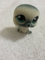 NEW Littlest Pet Shop Seal- Limited Edition #399 in Camp Lejeune, North Carolina