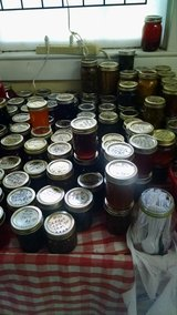 Homeade jams,jellies;pepper jelly,pickled quail or chicken eggs,fudge,fruit breads and more in Leesville, Louisiana