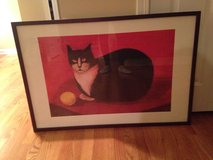 Large Cat Picture in Naperville, Illinois
