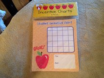 Student Incentive Charts in Naperville, Illinois