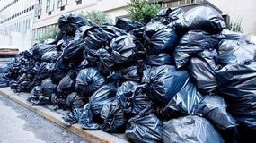 TRASH & JUNK HAULING /PCS CLEANING / YARD & GARDEN WORK / PAINTING / ETC in Ramstein, Germany
