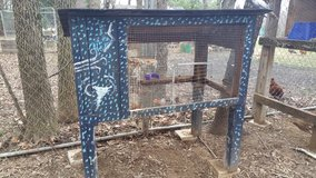 Rabbit Hutch or small animal Cage in Fort Campbell, Kentucky