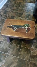 Wood Duck Stool in Clarksville, Tennessee