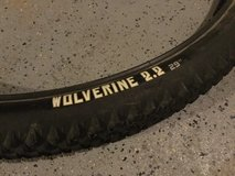 WTB Wolverine mountain bike tires in St. Charles, Illinois