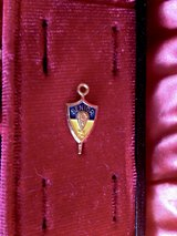 Vintage-Senior pin from Luther North High School (Blue & Gold) from 1972 in Joliet, Illinois