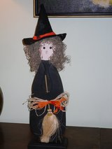 "cute 20.5"" halloween witch in Naperville, Illinois"