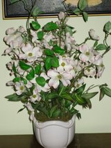 "flowers in white ceramic pot-21""h in Bolingbrook, Illinois"