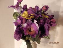 Yellow and Purple Pansies  13 bunches avail. in Joliet, Illinois