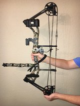 Compound Bow-Bear Apprentice 3 in Kingwood, Texas