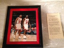 Chicago Bulls pictures in Morris, Illinois
