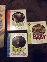 Zoo Animal Books in Chicago, Illinois