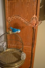 Antique Wrought Iron & Brass Bird Canary Cage With Stand Ornate in Joliet, Illinois
