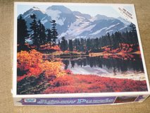 1000 pc scenic puzzle in Glendale Heights, Illinois