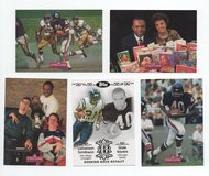 CHICAGO BEARS HALL OF FAMER GALE SAYERS LOT in Oswego, Illinois