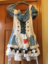 Adult Alice in Wonderland Miss Wonderland Costume in Aurora, Illinois