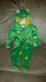 Frog Costume in Lockport, Illinois