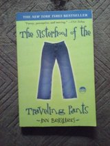 The Sisterhood of the Traveling Pants in Chicago, Illinois