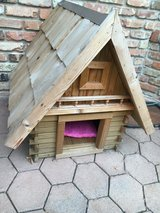 Cat house , dog house in Chicago, Illinois