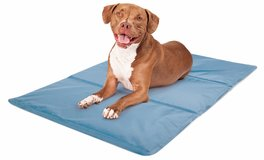 Rest Ology 2-Sided Blue Stay Cool Gel Technology Pet Mat - Large in Lockport, Illinois