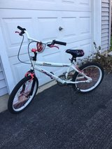 Girls bicycle in Naperville, Illinois