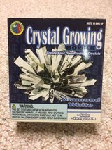 Grow your own crystal kit in Oswego, Illinois