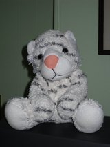 "10"" white tiger in Glendale Heights, Illinois"