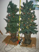 Christmas Trees Lighted with heavy bases in Yucca Valley, California