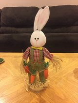 Bunny Decoration in Chicago, Illinois